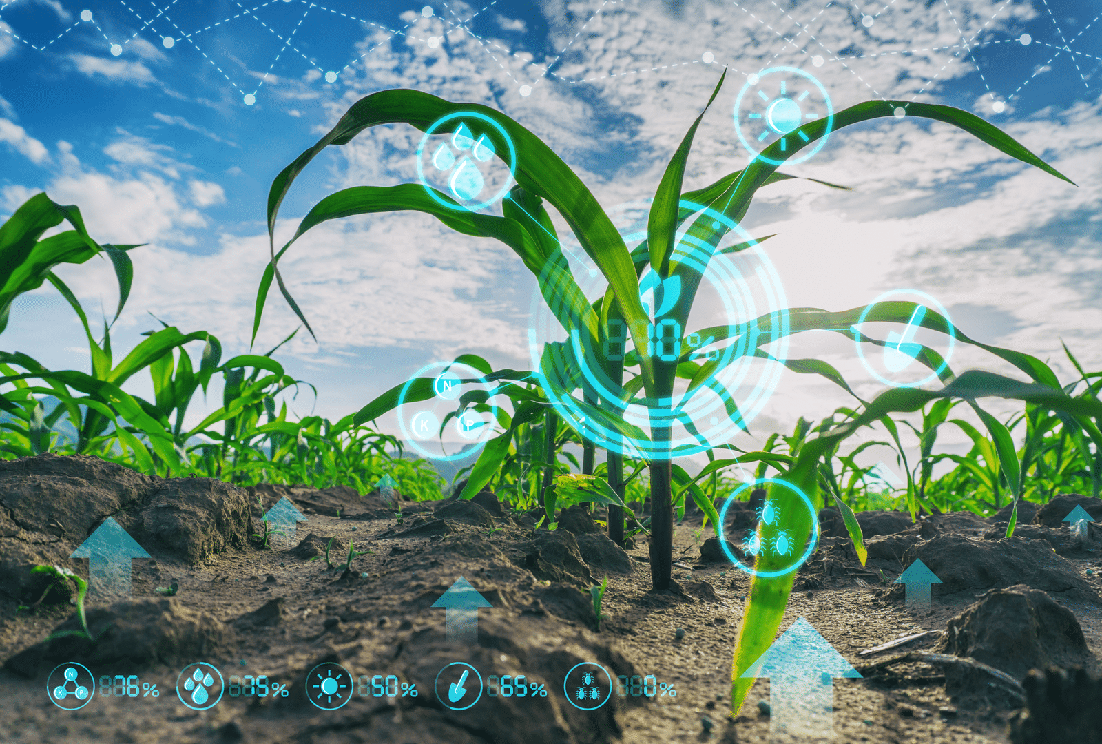 Linux Foundation starts landmark open source agtech project, AgStack