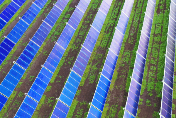 France's largest onshore wind producer, Boralex, is partnering with agrivoltaic solar energy pioneer Sun'Agri to develop farm energy tech