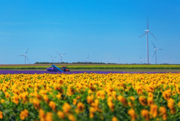 Ideanomics, a global EV technology maker, will acquire California-based producer of electric tractors and clean agricultural equipment.