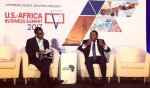 Adesina: Its time to reboot and boost US-Africa Commerce and Investments