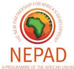 Official launch of NEPAD's 5% Agenda initiative for infrastructure financing in Africa