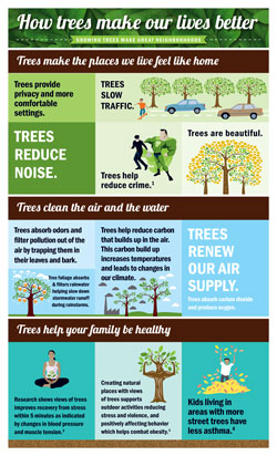 Trees-make-life-better-infographic-EN