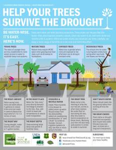 Drought infographic