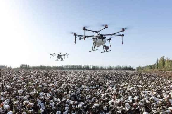 landwirtschaftliche Rohstoffe