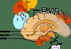 情緒與神經科學