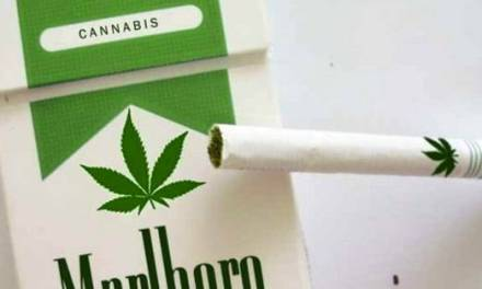 Common Sense Proposal Would Treat Marijuana Like Tobacco in New Jersey