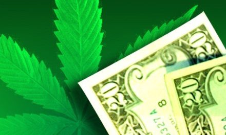 State receiving first tax payments from marijuana businesses
