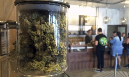 Canada's marijuana task force recommends retail pot sales and a minimum age of 18