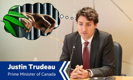 A Rant for a Rant: Parsing Mr. Trudeau.