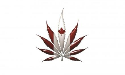 Canada's Cronos Group Signs Deal to Supply Medical Cannabis in Europe – Pharmaceutical Processing