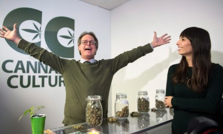 Montreal's Cannabis Culture stores to reopen Friday — without the pot – CBC.ca