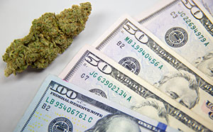 How Do I Invest in Marijuana Stocks in 2017?