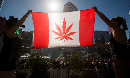 Canada will legalize pot, after arresting a bunch of people for pot offences first: Neil Macdonald – CBC.ca