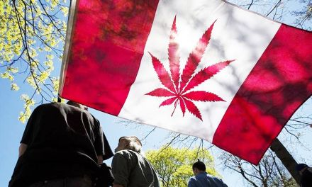 Canada Creates Official Guidelines to Promote Safe Cannabis Use – MERRY JANE