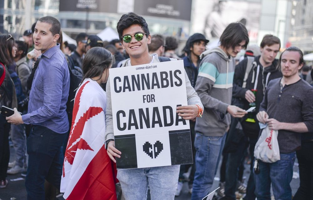 3 Stocks That Could Skyrocket If Marijuana is Legalized in Canada – IVN News
