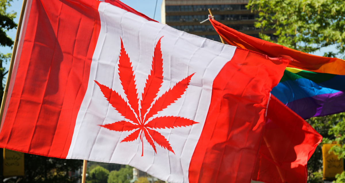 Marijuana Is Saving These Small Towns All Across Canada, Here's How – MTL Blog (blog)