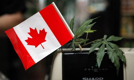 'The Experience and Expertise': Canada to Sell Pot in Liquor Stores