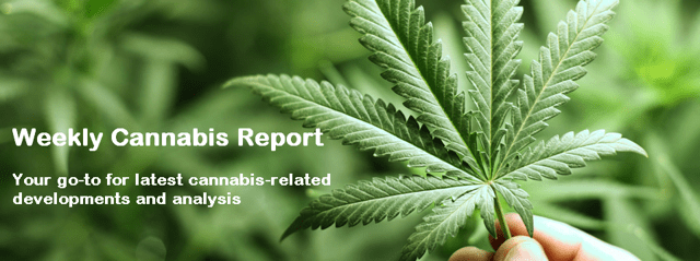 Weekly Cannabis Report – Don't Say We Didn't Warn You