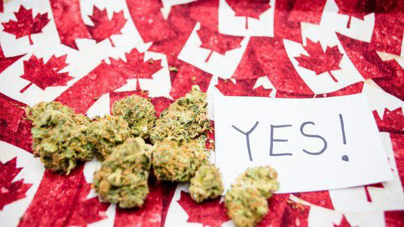 Canada's Recreational-Marijuana Prices May Soar After 2019