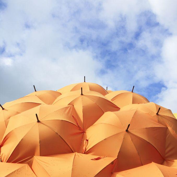 Assurance loyers impayés : utile ou superflue ?