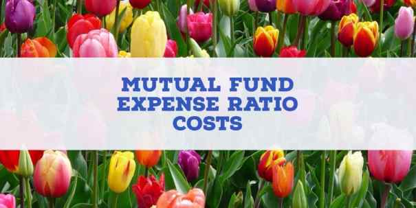 mutual fund expense ratio costs