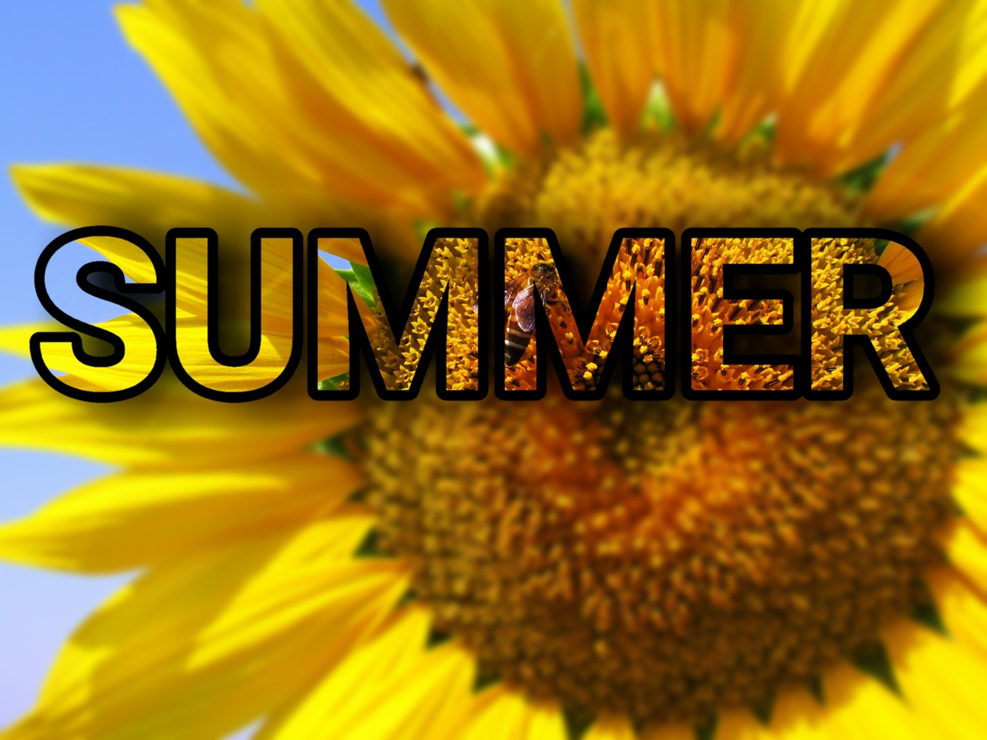 7 Happy First Day Of Summer Images To Post On June 21