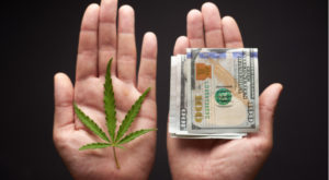 Aurora Cannabis Stock Is Attractively Valued After A Huge Q3