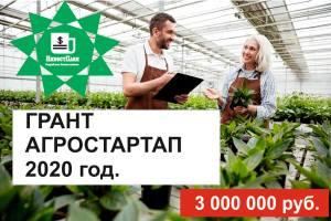 Агростартап в Ульяновской области 2020