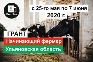 Грант начинающий фермер Ульяновская область 2020 год