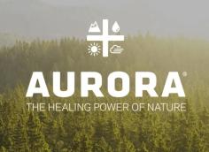 Аurora cannabis: акции и обзор