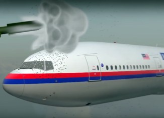 That's how flight MH17 came down (video)