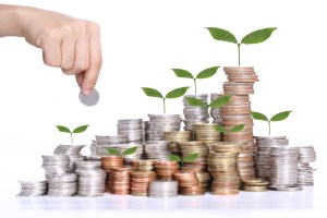 Deposit your budget for investment