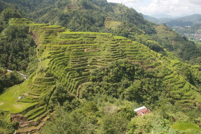 Culture - The Banaue Rice Terraces are 2,000-year-old terraces that were carved into the mountains of Ifugao in the Philippines by ancestors of the indigenous people. Photo : Imran Saddique