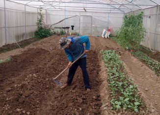 Thailand spearheads regional push towards organic agriculture