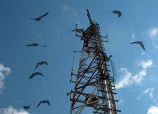 Philippines invites Chinese firms to become country's third telecom player