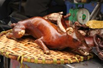 Dog meat is relatively common in Vietnam, and when grilled is called thit cho nuong