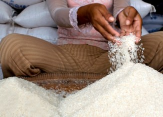 Cambodia rice exports set to double