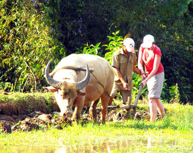Ecotourism in Laos: A thriving industry