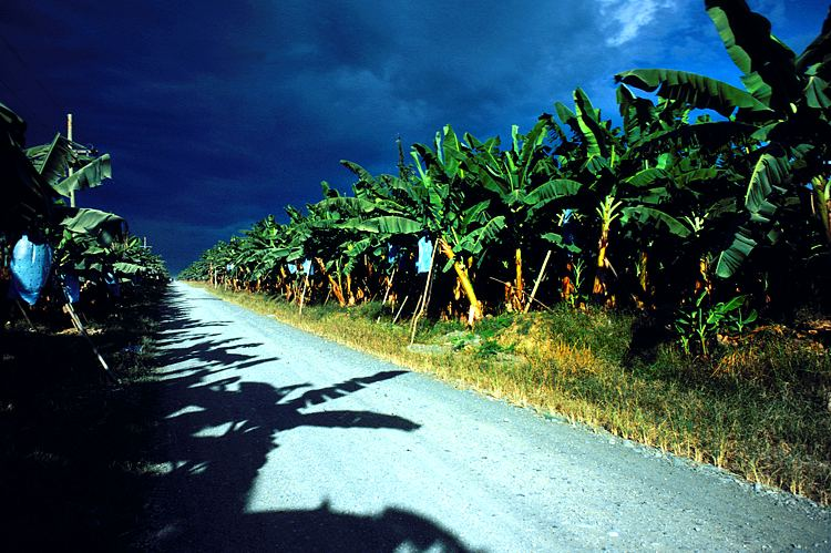 Manila turns focus on Mindanao