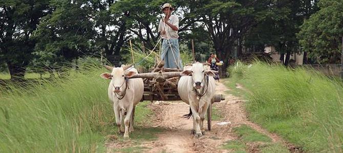 Study: 35% of rural Myanmar people rely on loans