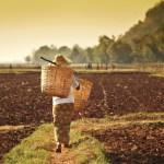 Myanmar investment law unpredictable