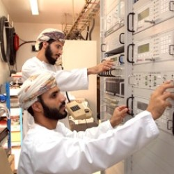 Oman, Singapore to jointly develop e-services