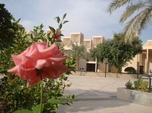 Interview with Qatar University