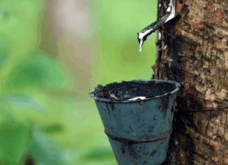 Myanmar inks rubber deal with Japan