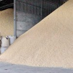 Thailand needs more money for rice subsidies