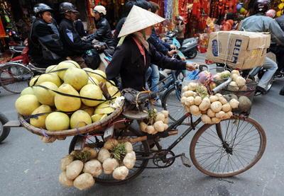 Vietnam Vendor