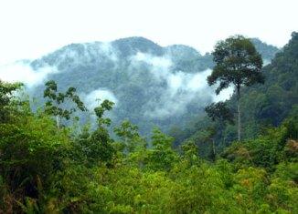 Permaju to secure giant Sabah landbank