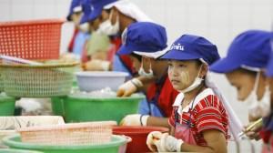 burmese-worker