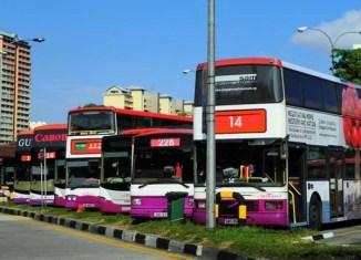 Singapore opens public bus system to private investors