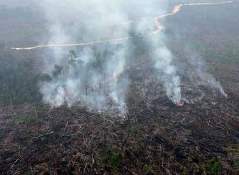 Sarawak, Brunei have their own haze problem